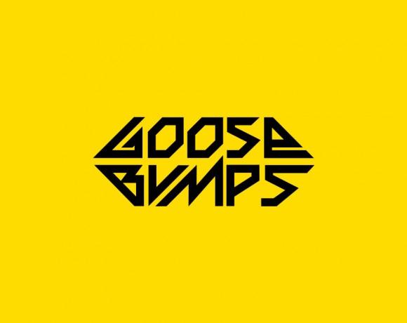 Dj Goose Bumps